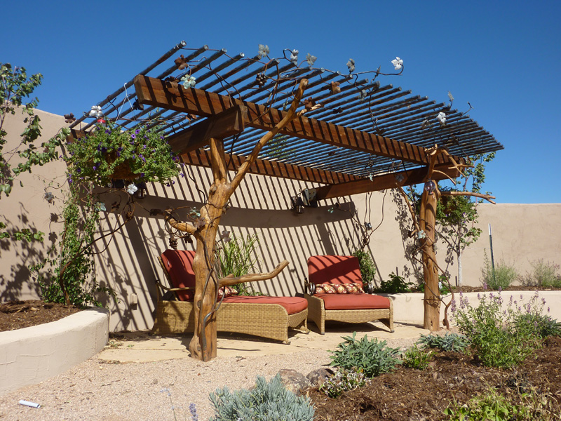 arbor-pipe-and-grape-vine-awning