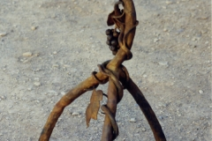 grape-tractor-seat-sculpture