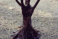 tree-trunk-table-sculpture